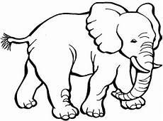 elephant coloring page netart