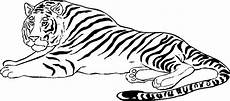 Malvorlagen Tiger Zum Ausdrucken Tiger Ausmalbilder Malvorlagentv