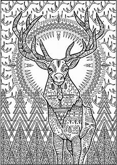 creative haven untamed designs coloring book coloring for adults pinterest coloring