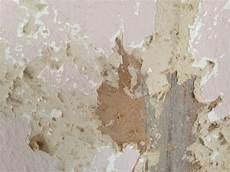Alte Tapete Pressspanwand Entfernen Wand Maler