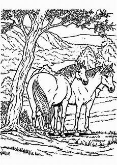 ausmalbilder hunde und pferde ausmalbild club