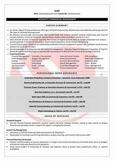 senior accountant sle resumes download resume format