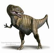 Eocarcharia  Dinopedia The Free Dinosaur Encyclopedia