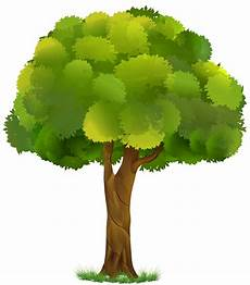Clipart Transparent Background Tree Images free transparent tree cliparts free clip