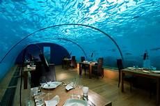 underwater adventures at conrad maldives rangali island