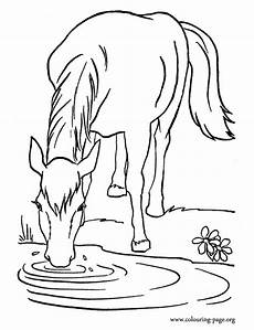 water animals printable coloring pages 17265 a farm water in the lake coloring page coloring pages animal coloring