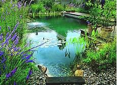 naturelle pour piscine dossier gt le principe de la piscine naturelle