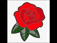 Gambar Bunga Cantik Mawar Merona Indahhh