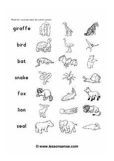 zoo animals worksheet for 1st 3rd grade lesson planet