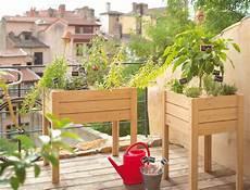 jardin potager sur terrasse cr 233 er un potager urbain sur un balcon