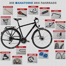 fahrrad paymorrow kundenbefragung fragebogen muster