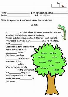 science worksheets year 3 12475 the city school grade 4 science 1st test