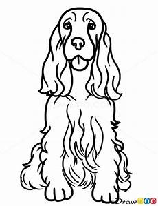 Ausmalbilder Hunde Cocker Spaniel How To Draw Cocker Spaniel Dogs And Puppies G 246 R 252 Nt 252 Ler