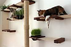the cat mod garden complex diy cat tree cat shelves