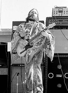 steely dan guitarist 55 best images about steely dan on the doobie brothers the guess who and san diego