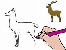 cerf dessin facile apprendre 224 dessiner un cerf