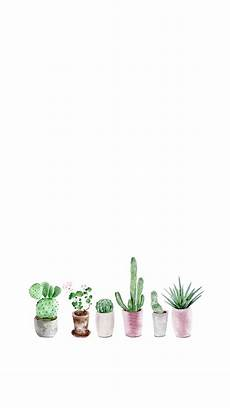 aesthetic cactus iphone wallpaper get here simple aesthetic computer backgrounds s