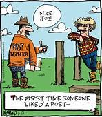 Reality Check By Dave Whamond For January 13 2015  Funny