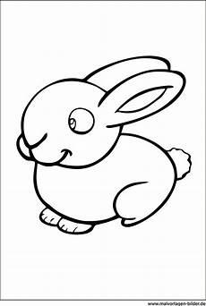 kaninchen malvorlagen zum ausdrucken ausmalen