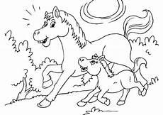 Malvorlagen Pferde Gratis Ausdrucken Malvorlage Pferd Und Fohlen Kostenlose Ausmalbilder Zum