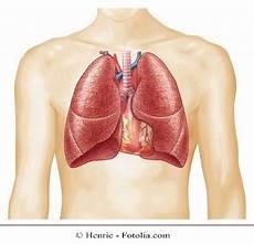 dolore alla gabbia toracica schiena dor no peito direito e nas costelas ao repouso o ao