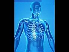 hashimoto thyreoiditis hashimoto thyreoiditis mein feind im k 246 rper hd