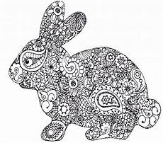 Ausmalbilder Hasen Meerschweinchen Unique Ausmalbilder Kaninchen Ae Photo De