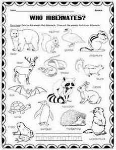 free printable coloring pages hibernating animals 17014 65 best hibernation theme unit images in 2020 animals that hibernate winter theme