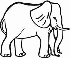 big animals coloring pages 16904 coloring pages for animals elephant big animals coloring pages