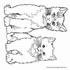 Katzenbabys Ausmalbilder Ausmalbilder Katzenbabys 132 Malvorlage Katzen