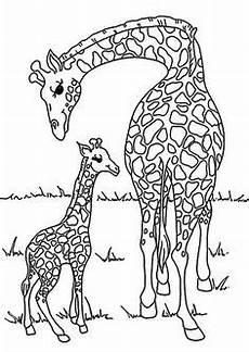 Tierbaby Ausmalbilder Ausmalbilder Bild Tiere Zum Ausmalen Ausmalbilder Tiere
