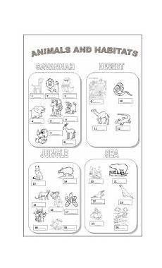 animal habitats printables vocabulary worksheets the animals animal habitats animals and