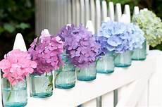 fiori di giugno e20 partycolari i fiori di giugno