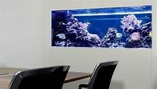 aquarium als raumtrenner meerwasser aquarium raumteiler aquariummuenchen