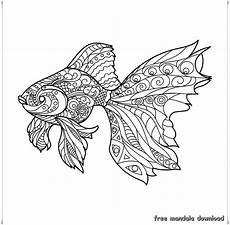 golden fish mandala goldener fisch mandala free mandala