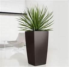 vasi per arredamento interno vasi interno vasi e fioriere