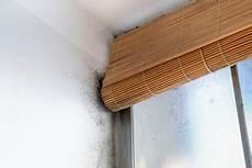 Schimmel In Der Wohnung Mietminderung - musterbrief mietminderung bei schimmel in der wohnung