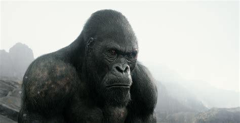 Gorilla Vs Tarzan