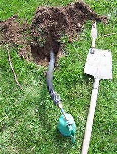 comment se debarasser des taupes abri de jardin produit contre les taupes