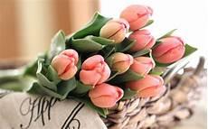 dei fiori battesimo fiori battesimo fiori per cerimonie fiori da regale ad