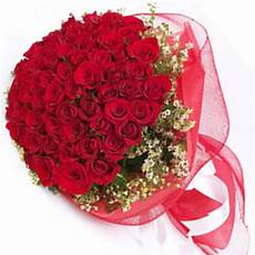 70 Roses Designer Bouquet With Net Wrapping