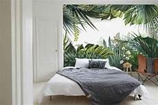 Papier Peint Trompe L œil Jungle Tropicale Nouveaut 233