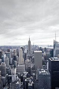 concrete jungle new york tsangtastic