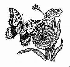 Ausmalbilder Blumen Schmetterlinge Schmetterling Blumen Ausmalbild Malvorlage Schmetterlinge