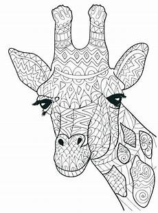 giraffe coloring pages adultcoloringpages