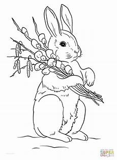 awesome 15 cute easter bunny coloring pages printable beatrix potter easter bunny colouring