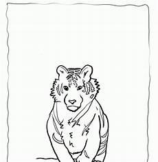 malvorlagen wolf x reader