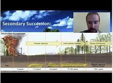 places where secondary succession take place