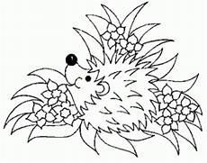 Igel Malvorlagen Gratis Igel In Pflanzen Ausmalbild Malvorlage Tiere