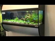 nano aquarium wandaquarium messe 2008
